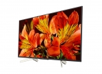 SONY BRAVIA 4K FW-55BZ35F LCD Display, 55''