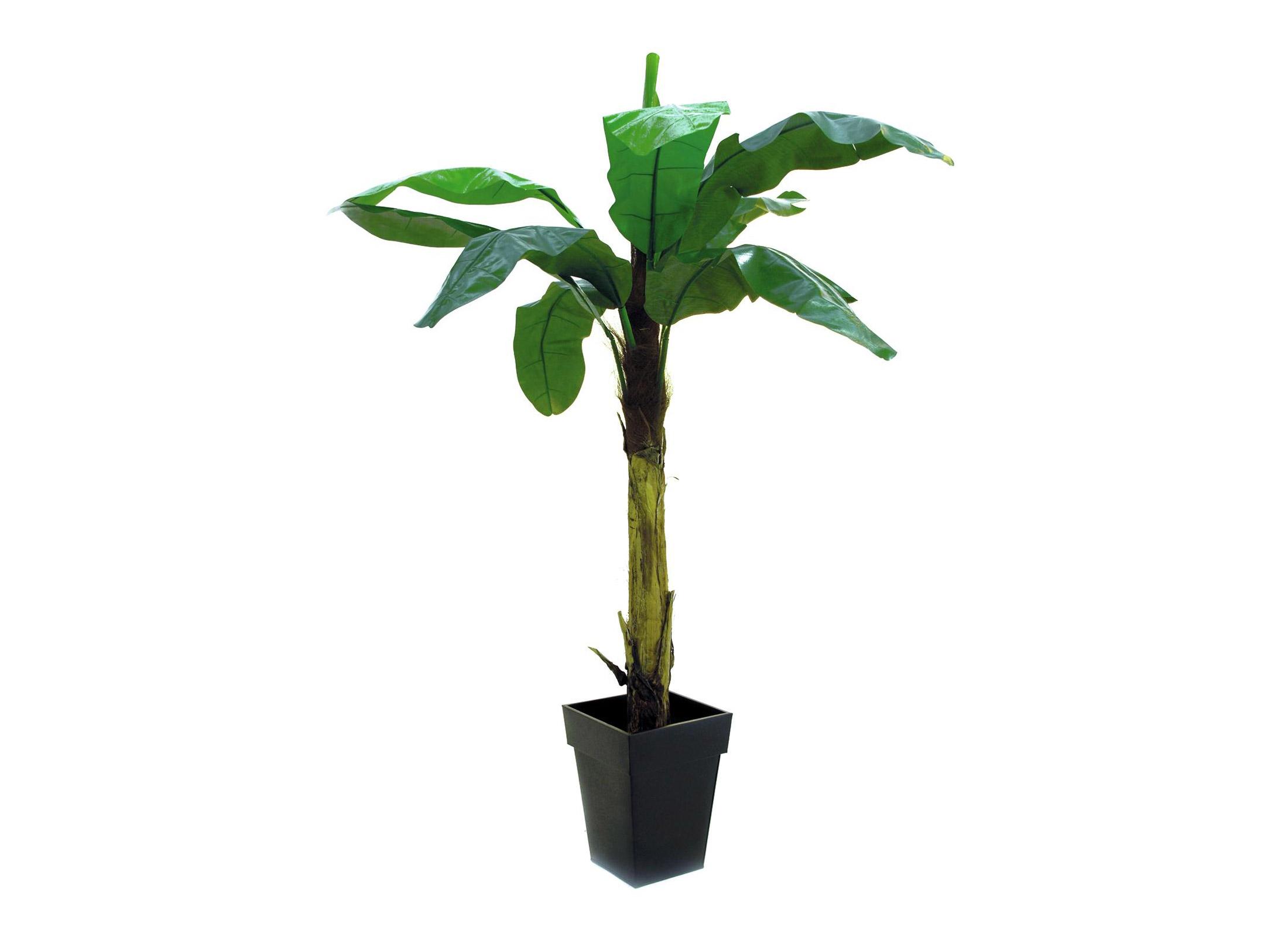 europalms bananenpalme 220cm kunstpflanze g nstig online. Black Bedroom Furniture Sets. Home Design Ideas