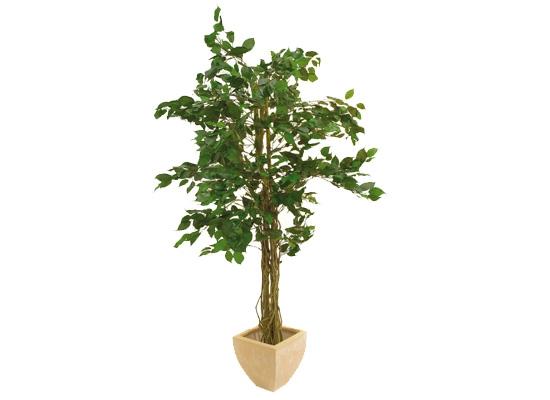 europalms ficus benjamini baum 150cm multi stamm kunstpflanze g nstig online kaufen bei huss. Black Bedroom Furniture Sets. Home Design Ideas