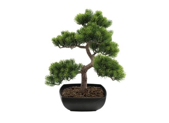 europalms bonsai pinienbaum 50cm kunstpflanze g nstig online kaufen bei huss licht ton. Black Bedroom Furniture Sets. Home Design Ideas