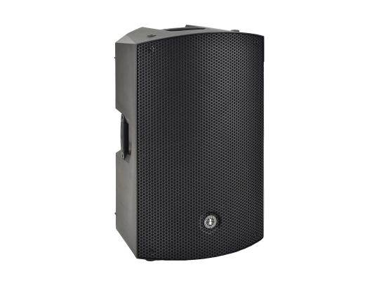 ANT MBS 15 Aktiv Lautsprecher